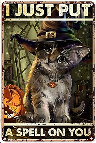 KDLY Witch Decor Aesthetic Witchcraft Cat I Just Put A Spell