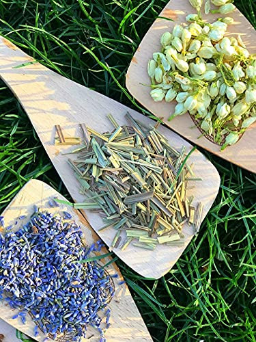 OKDOKEY Witchcraft Beginners Herb Kit | 15 Herbs for