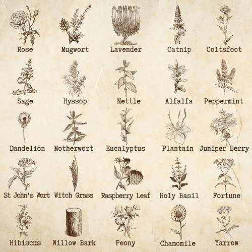 Witchcraft Supplies and Herbs for Spells 25 Premium Fine